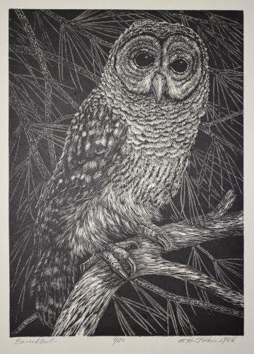 public-domain-vintage-owl-image-2